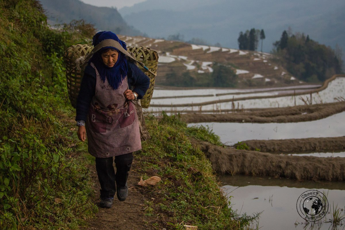A Woman carrying ducks at the Duoyishu Rice Terraces - How to visit the Yuanyang Rice Terraces, Yunnan, China