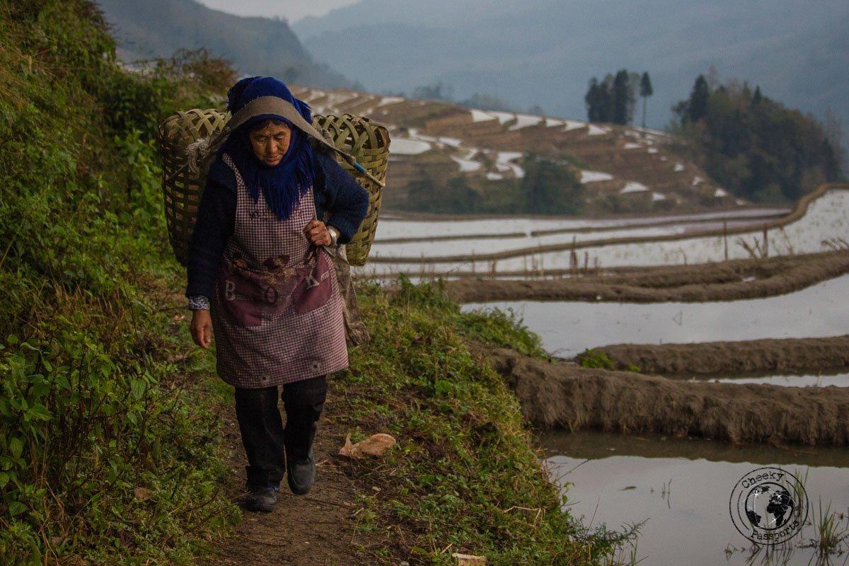 A Woman carrying ducks at the Duoyishu Rice Terraces - How to visit the Yuanyang Rice Terraces, Yunnan, China