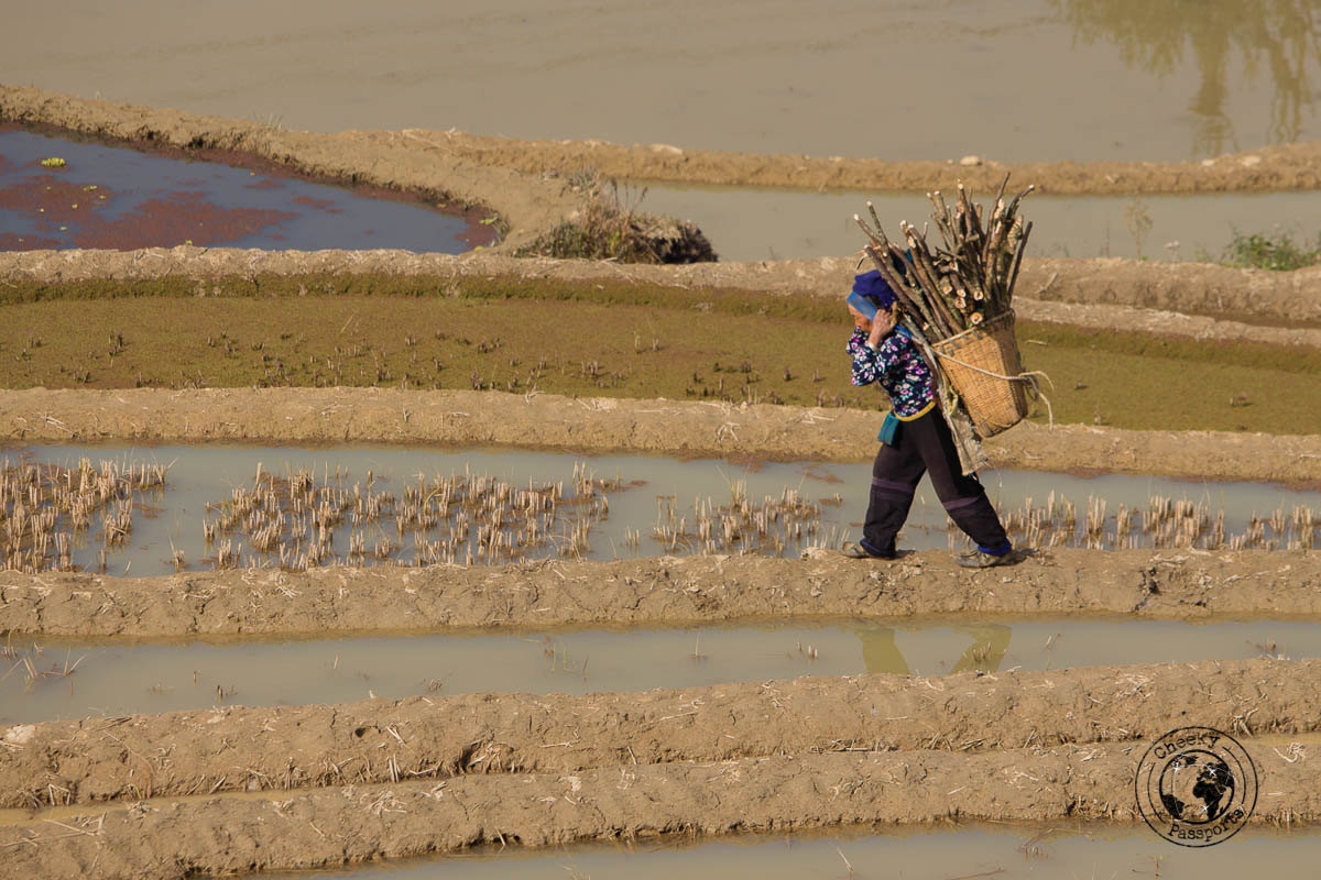 Farmer on the trek towards the Bada scenic area - How to visit the Yuanyang Rice Terraces, Yunnan, China