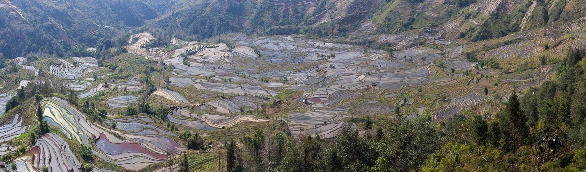 Laohuzui Scenic Area - How to get to the Yuangyang Rice Terraces, Yunnan, China