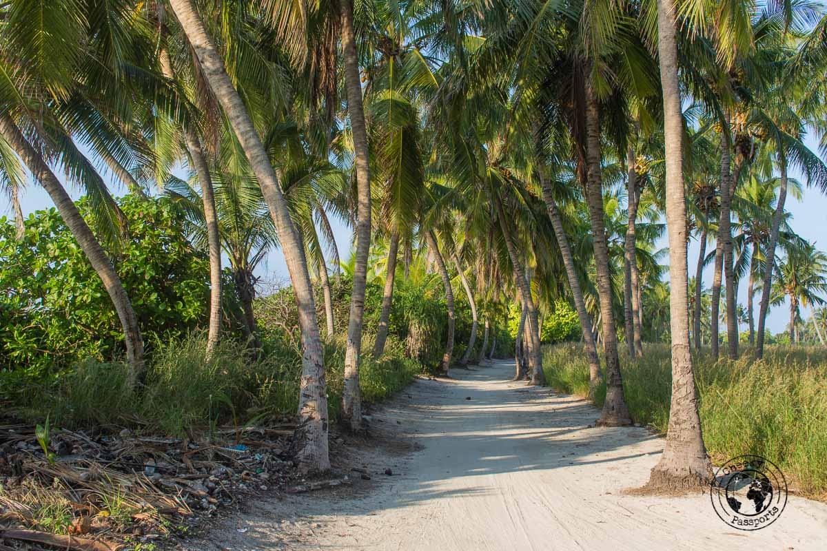 Maldives local islands rich in vegetation and sandy roads