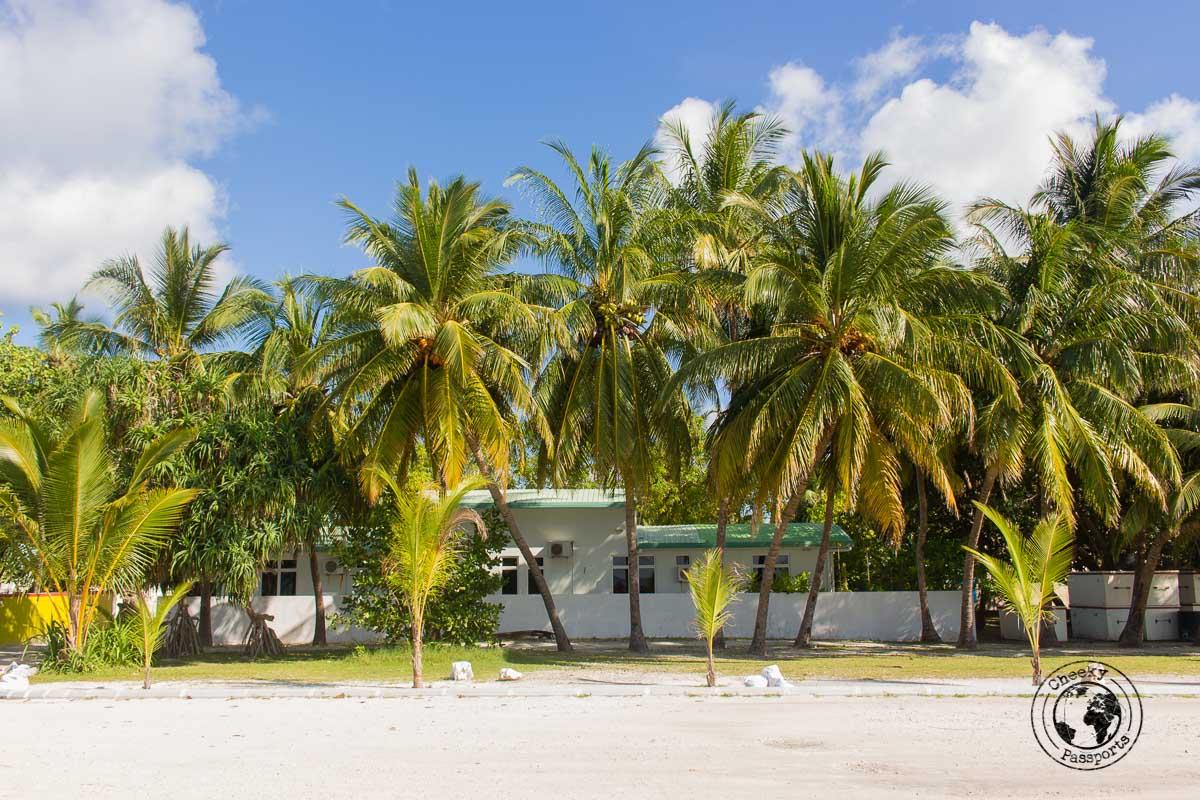 Rasdhoo harbour - backpacking maldives