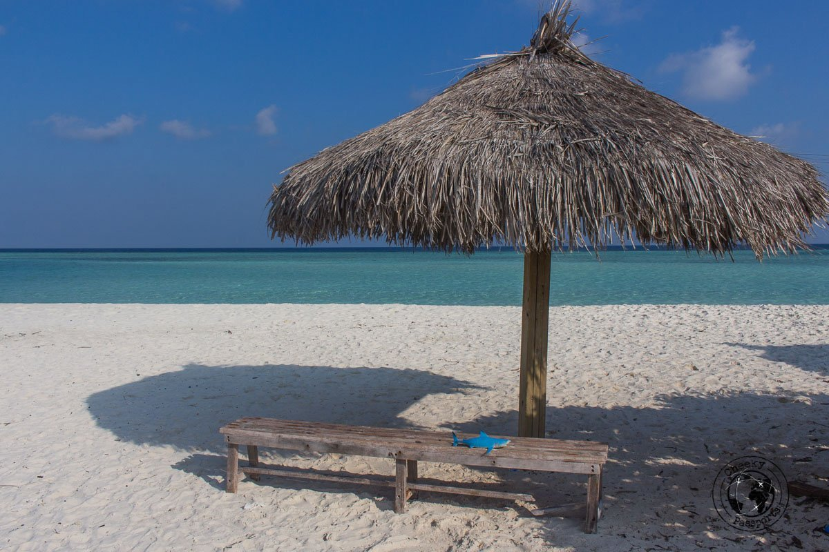 Some shade at Madivaru point - Backpacking Maldives - A Guide to Maldives Local Islands Travel for €35day