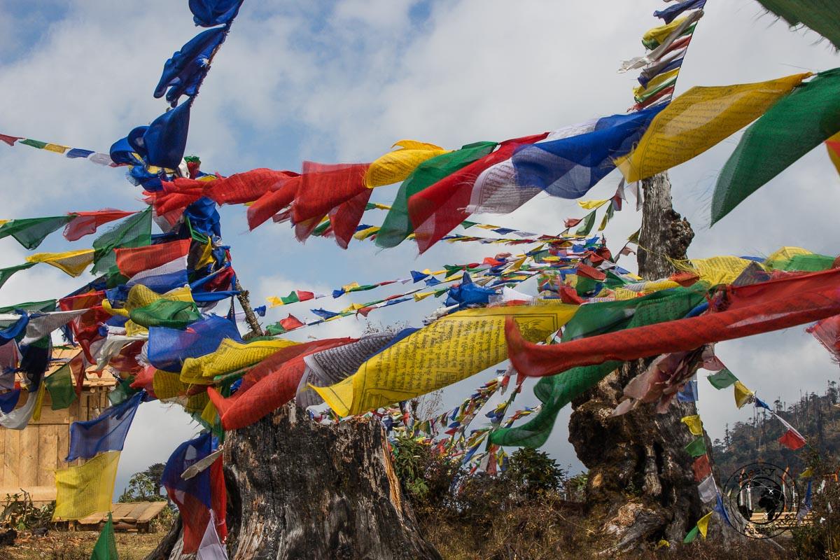 Prayer flags at the windy Manda-La in Dirang - Explore Dirang and Bomdila in Arunachal Pradesh - Northeast India Travel