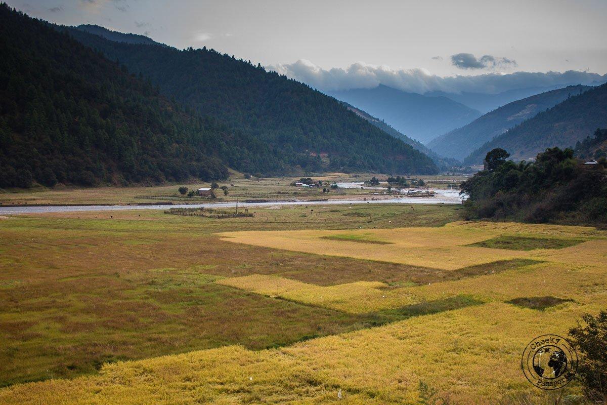 Views of the Dirang Valley - Explore Dirang and Bomdila in Arunachal Pradesh - Northeast India Travel
