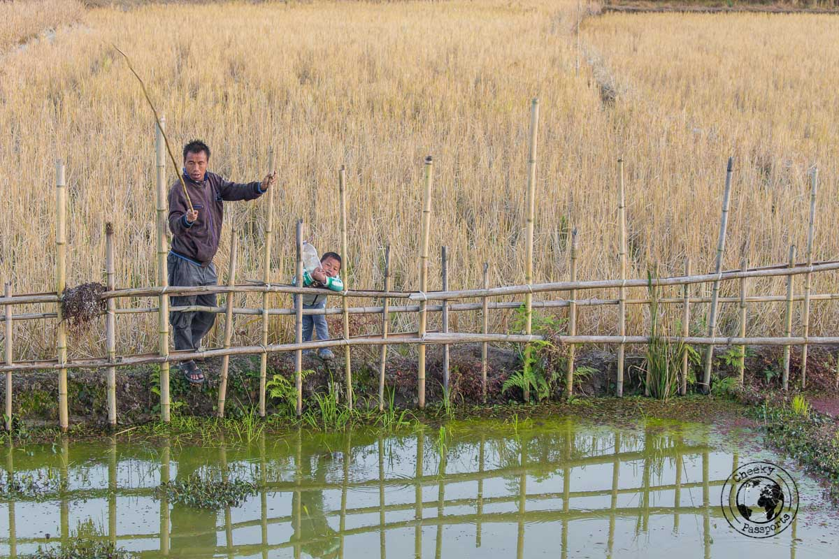Fishing for frogs at the Ziro Valley - Discovering Ziro Valley and the Apatani Tribe of Ziro, Arunachal Pradesh