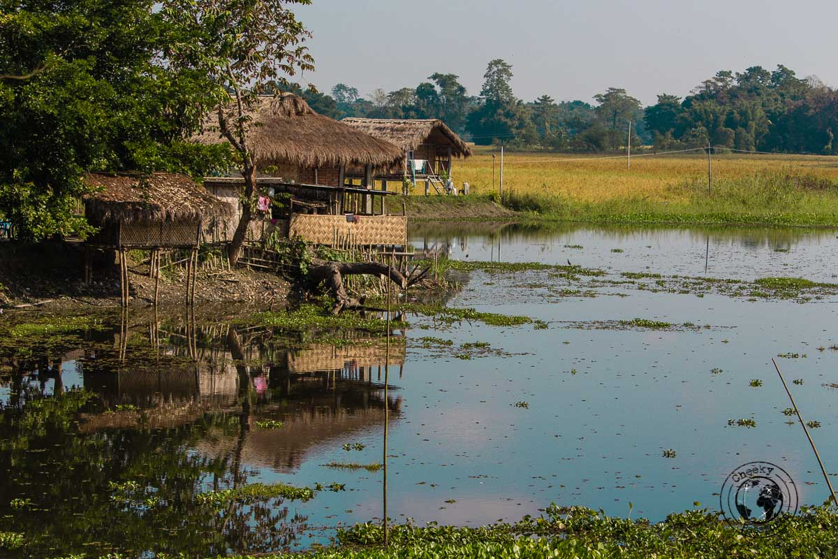 Lakeside Majuli homes - The Magic of Majuli Island – One of the Best Places to Visit in Assam
