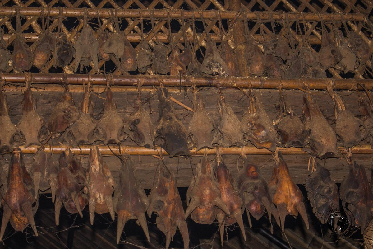 Bones decorating houses at Longwa - Exploring Longwa Village and meeting the Konyak tribe in Nagaland