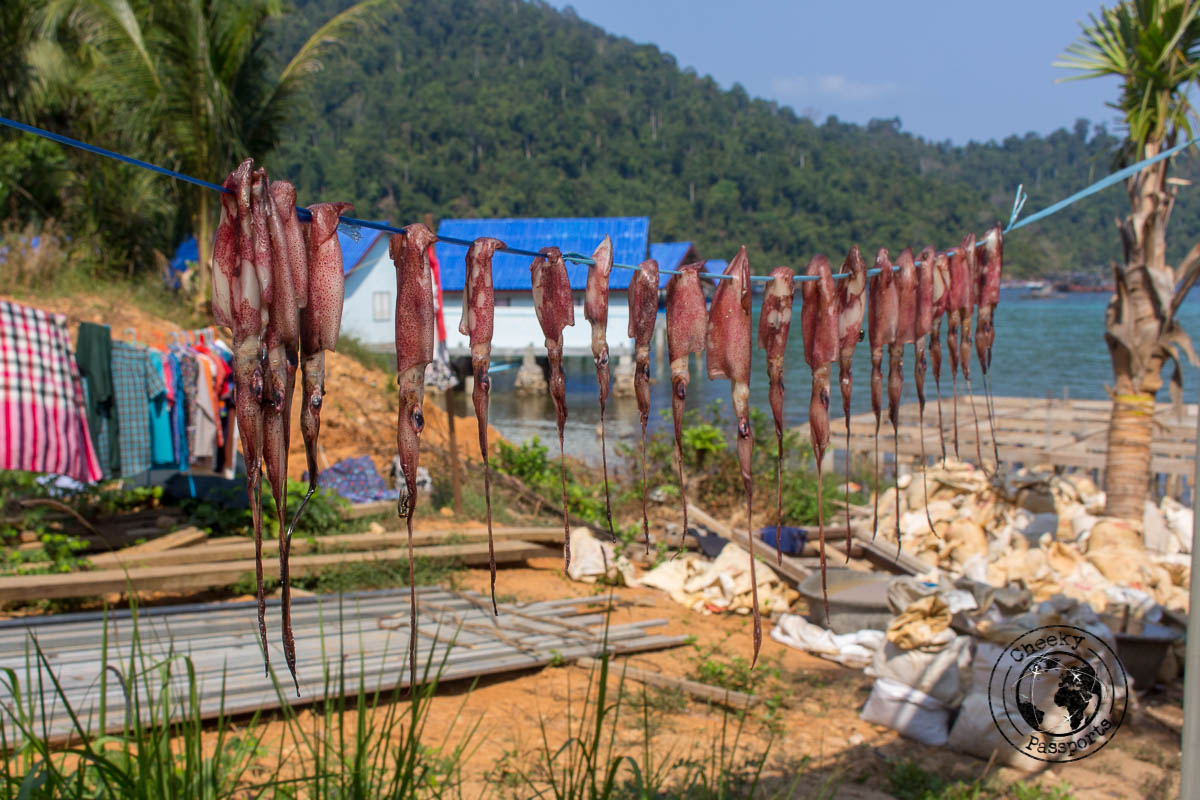Lots of seafood at the Mergui - Untouched beaches of the Mergui Archipelago