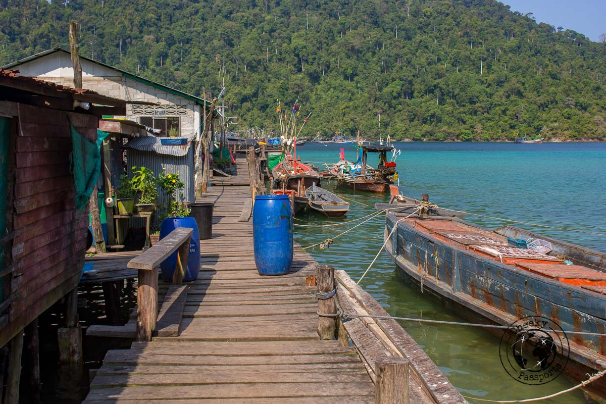 The moken village - Dogs are thought to 'see' evil spirits - Exploring the Spectacular Mergui Archipelago in Myanmar with Moby Dick Tours