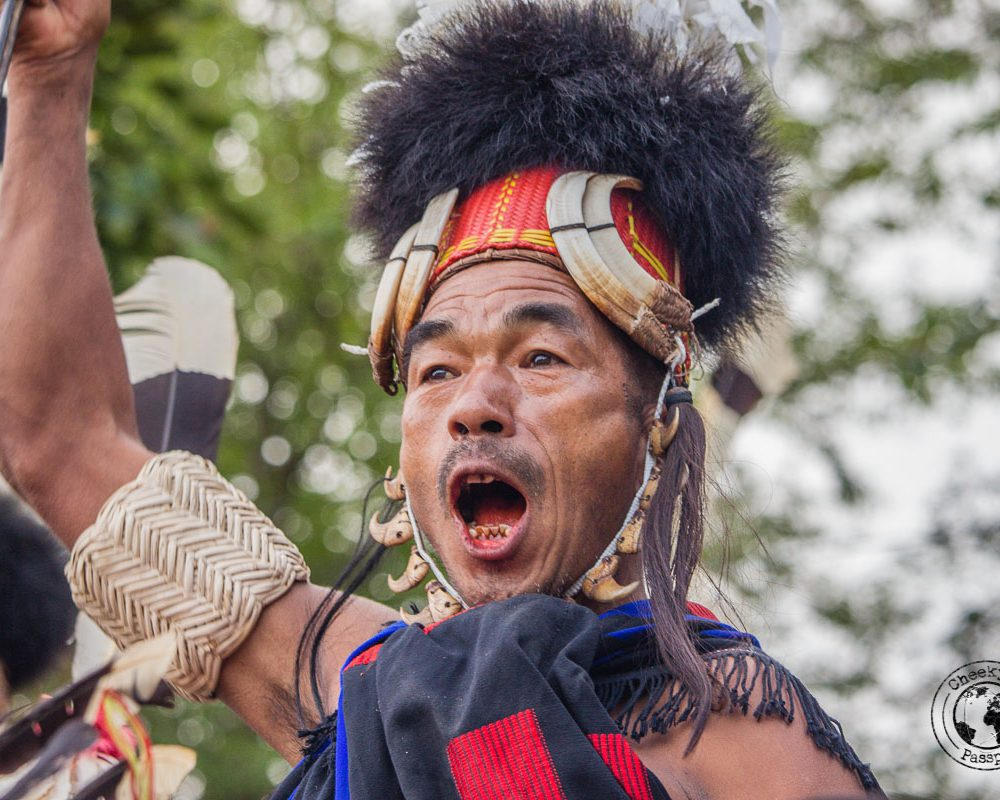 Nagaland Hornbill Festival – The Ultimate Guide