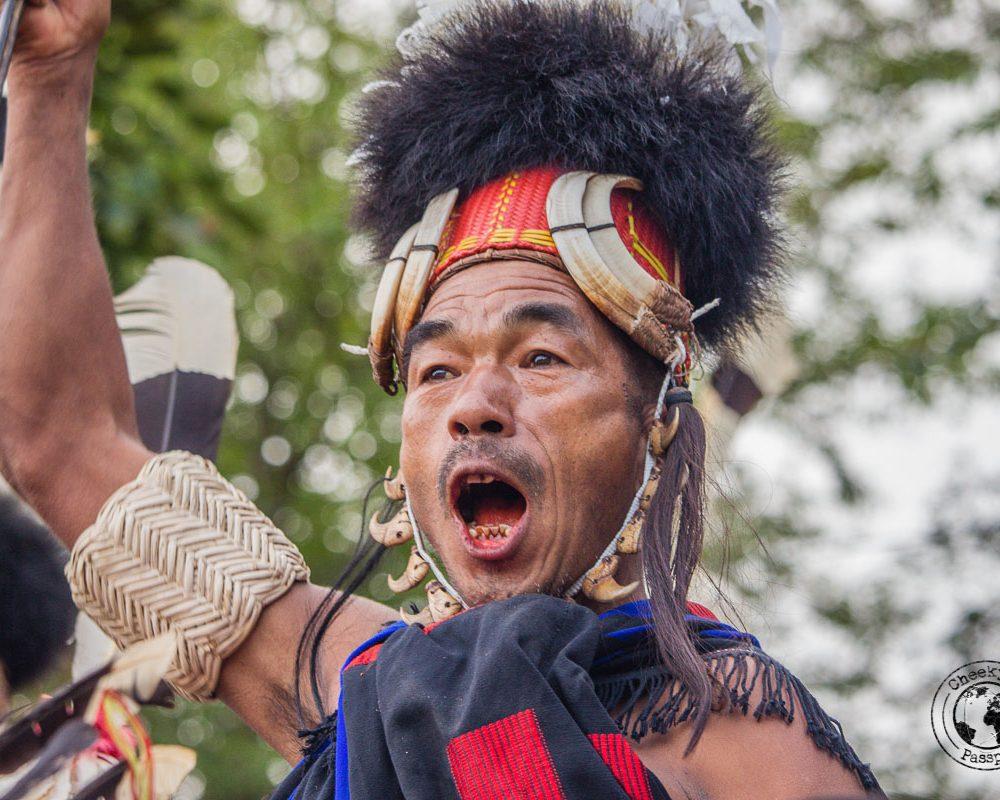 Nagaland Hornbill Festival – The Ultimate Guide
