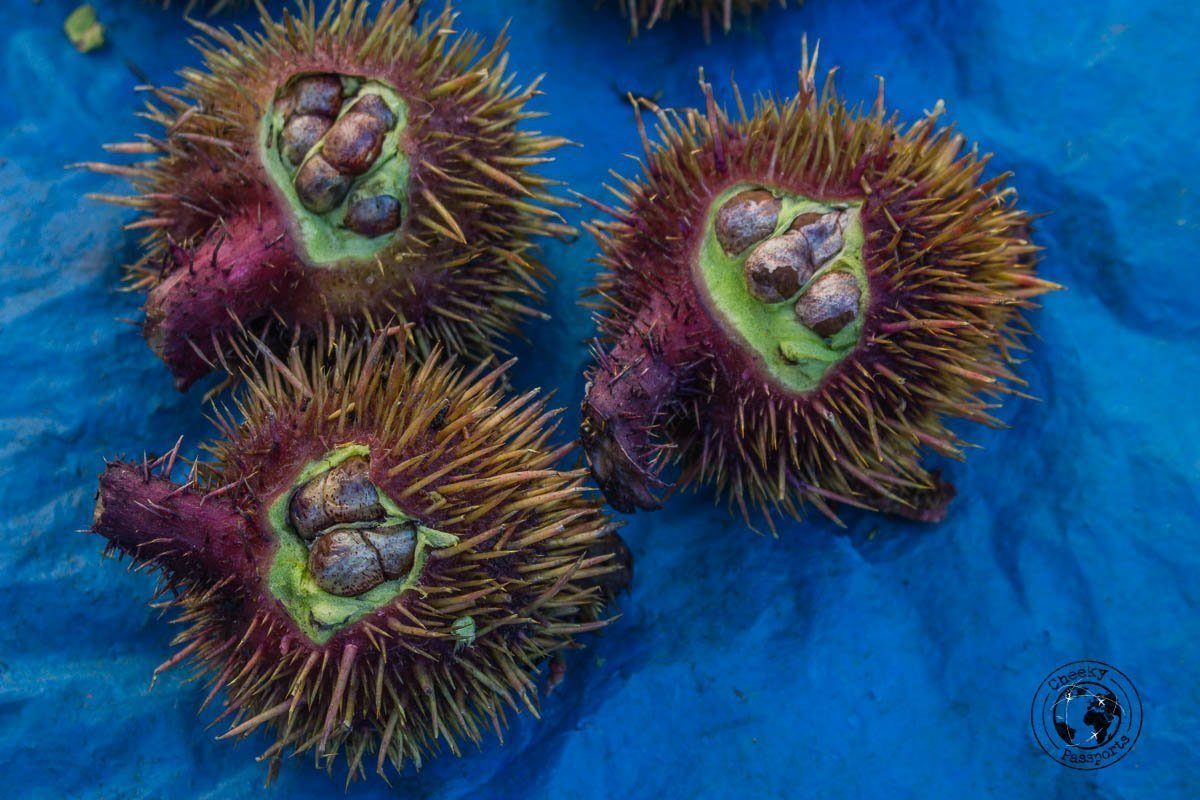 Different fruits at the Ima Keithel market in Imphal