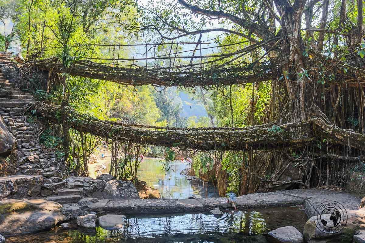 Double Root Bridge in Nongriat - Places to visit in Meghalaya
