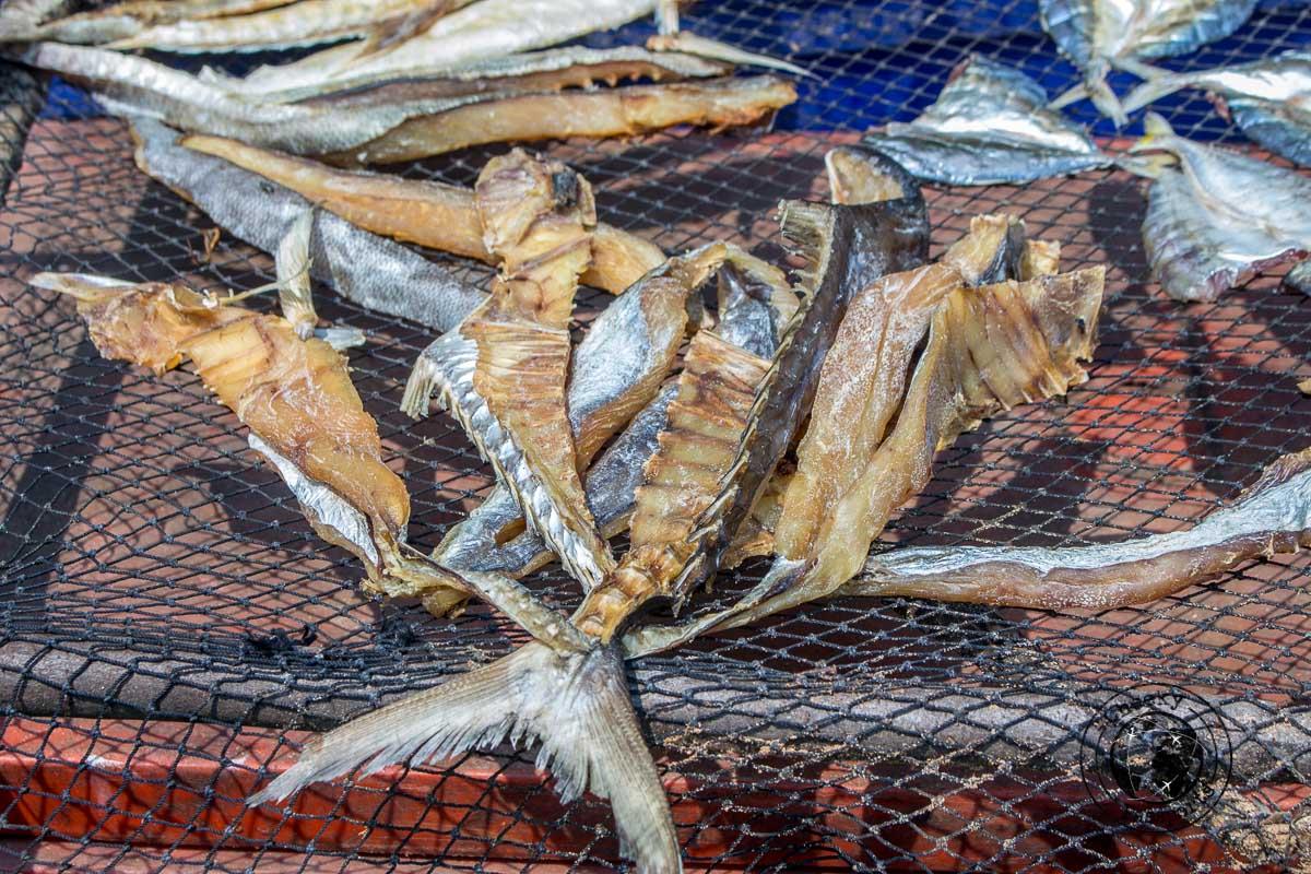 Dried fish being prepared around the Dawei peninsula