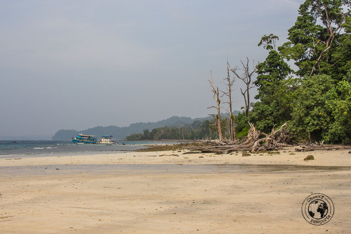 Elephanta beach, one of the top places to visit in andaman