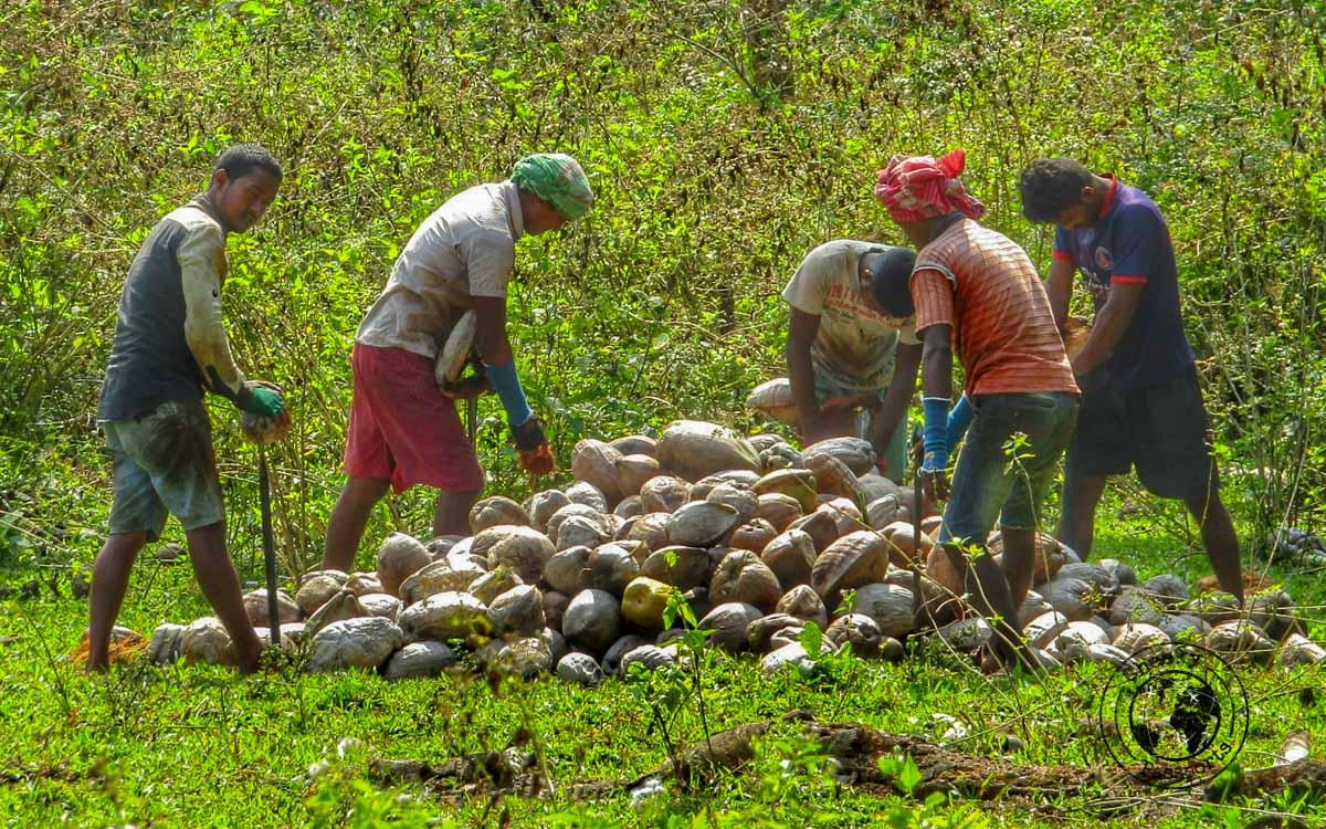 Men at work at Lalaji beach