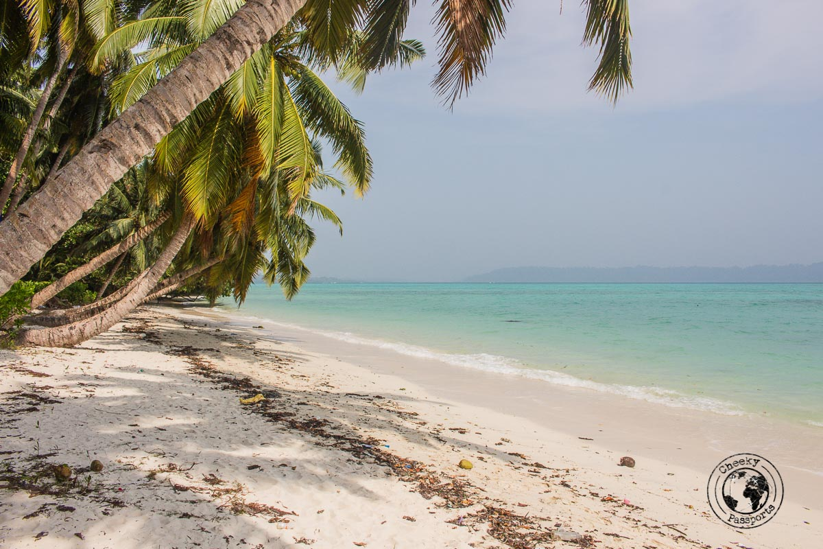 The beaches of Havelock in Andaman
