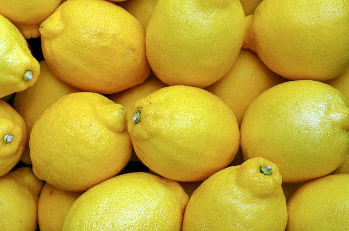 Lemon based Granita