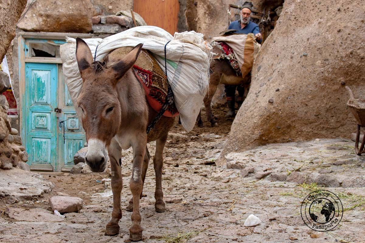 Donkey work at the ancient village of Kandhovan