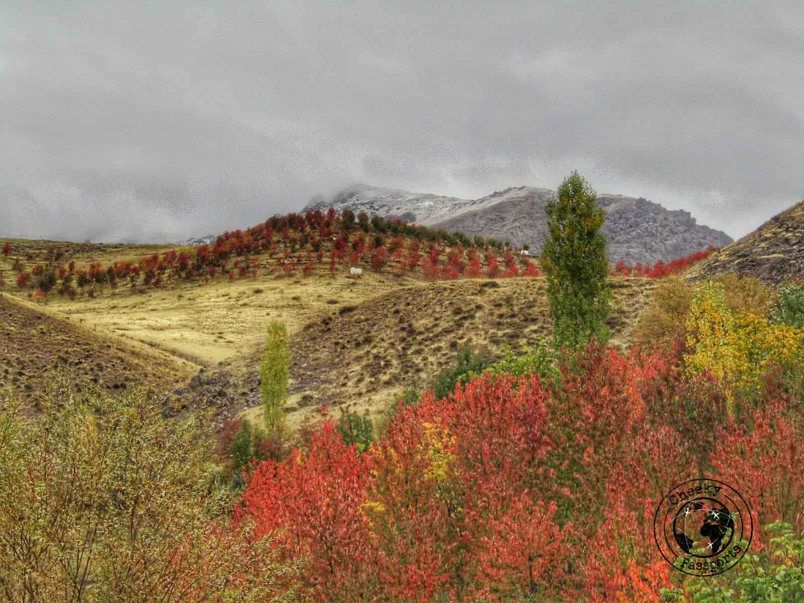 The colours of the Alamut Valley in Iran - Travel to Iran