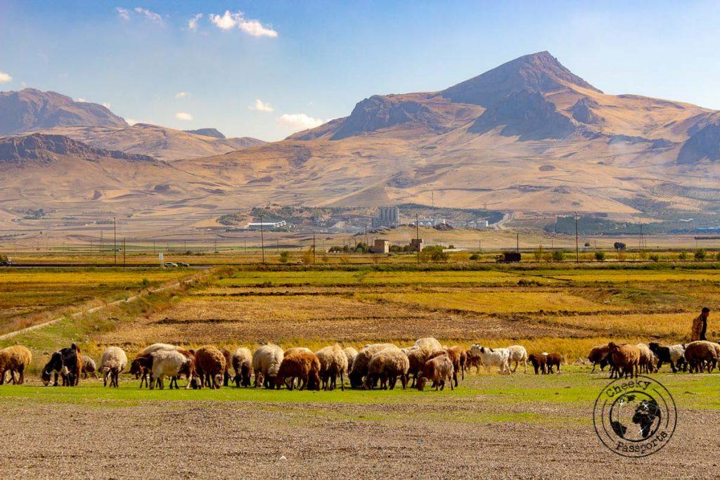 The mountains in Kermanshah