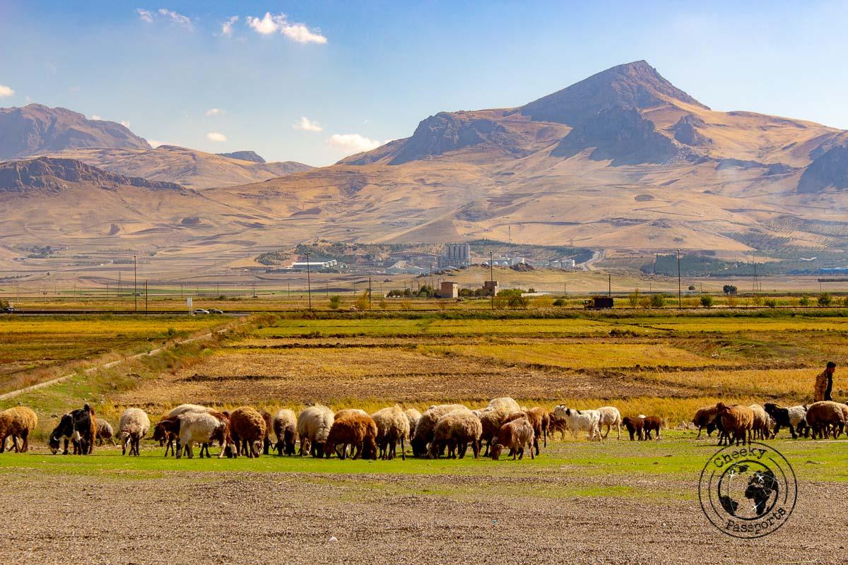 The mountains in Kermanshah -independent travel in Iran