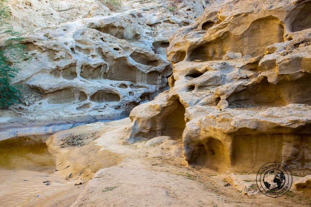 Entry to the Chahkooh Canyon in Qeshm island