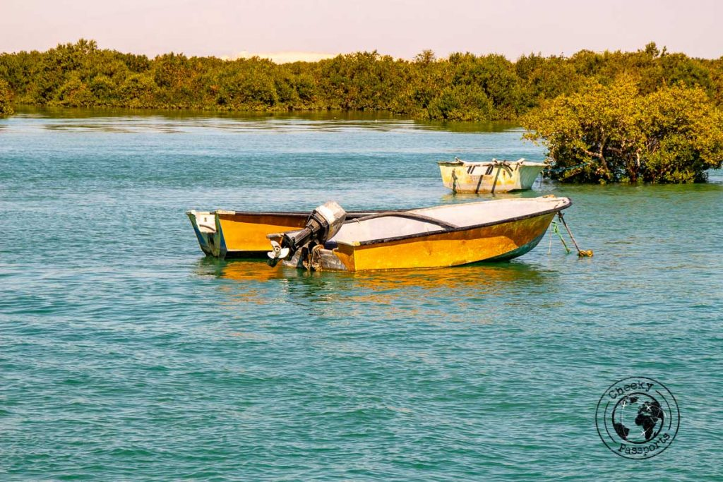 Tour boats at the Hara Mangrove sea forest during our qeshm travel
