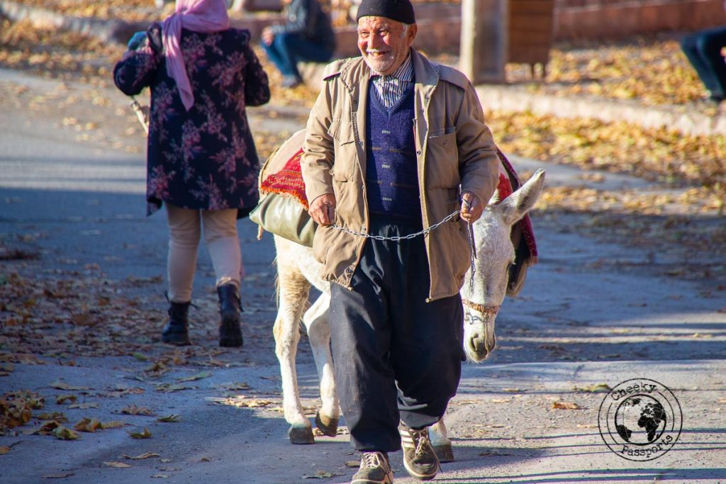 Man and Donkey in Abyaneh